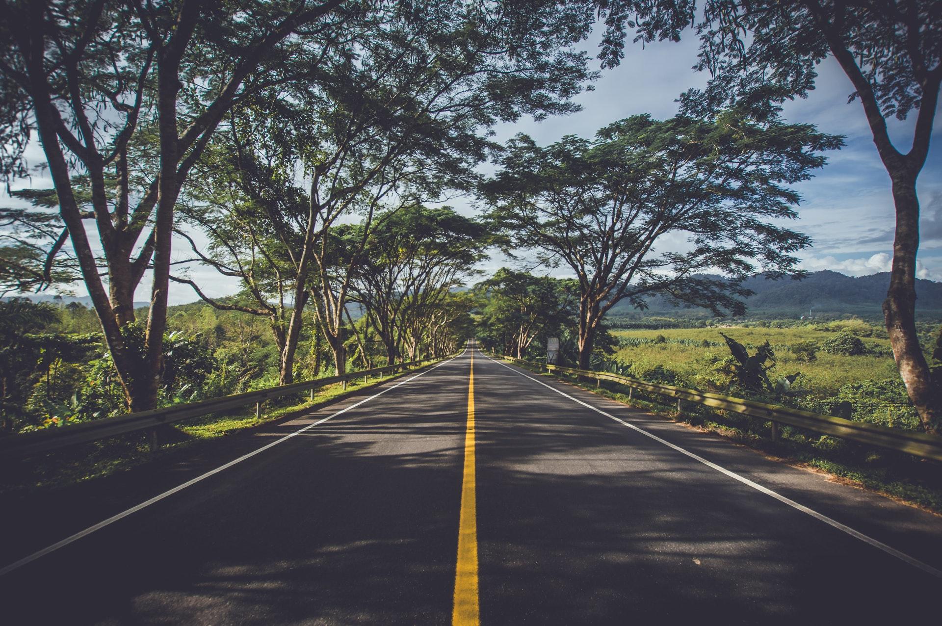 Qual é o caminho para o crescimento?